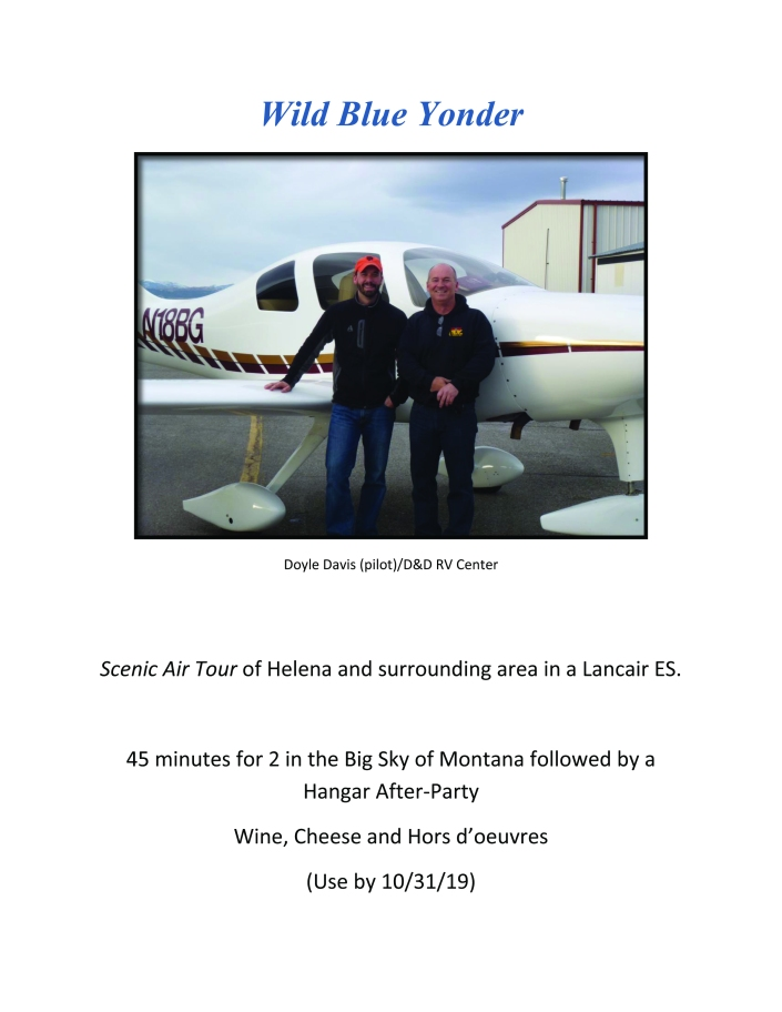 Scenic air tour with hangar after party for 2